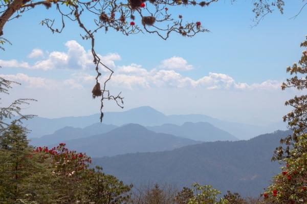 trekking au népal, région helambu.